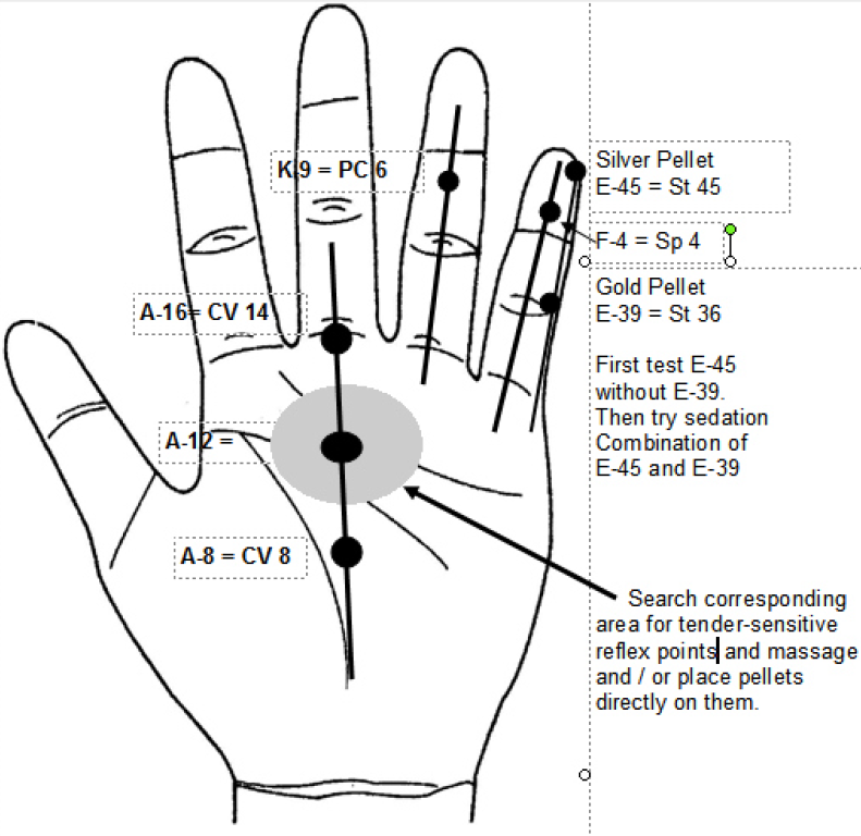 Korean Hand Therapy Micro Meridians